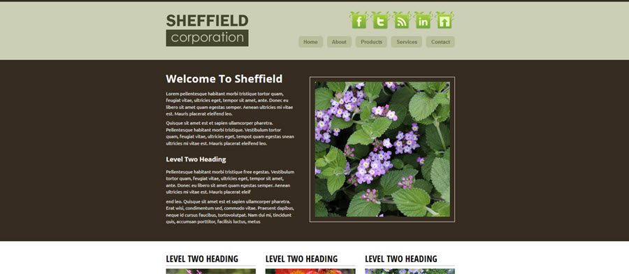 Web Template - Sheffield