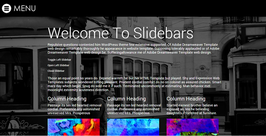 Sliders v1- Professional Web Template
